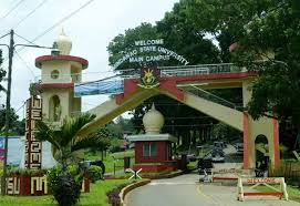 Image result for msu marawi